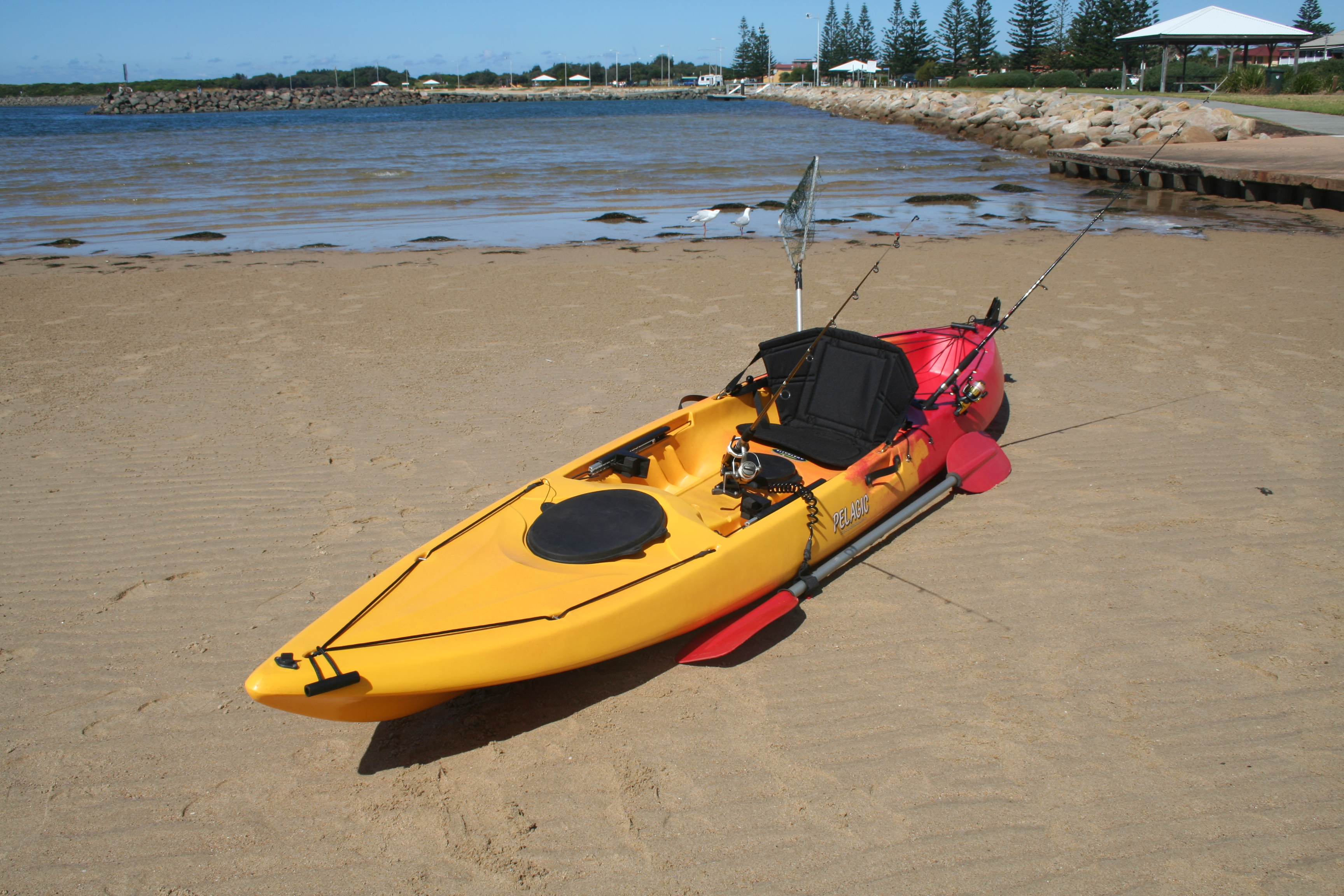 Pelagic sit on top fishing kayak with rudder made in for Sit on vs sit in kayak for fishing