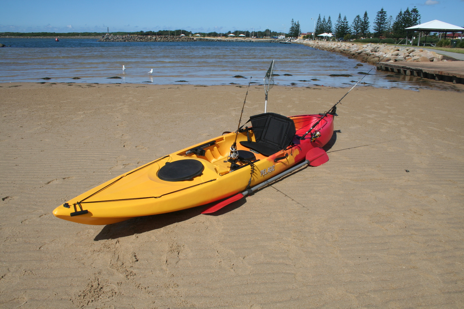 Pelagic sit on top fishing kayak with rudder made in for Best sit on top fishing kayak